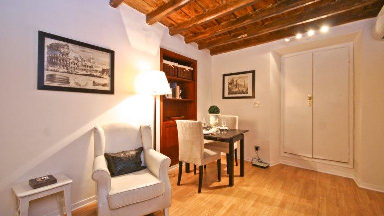 Studio confortable à louer à Centro Storico, Rome