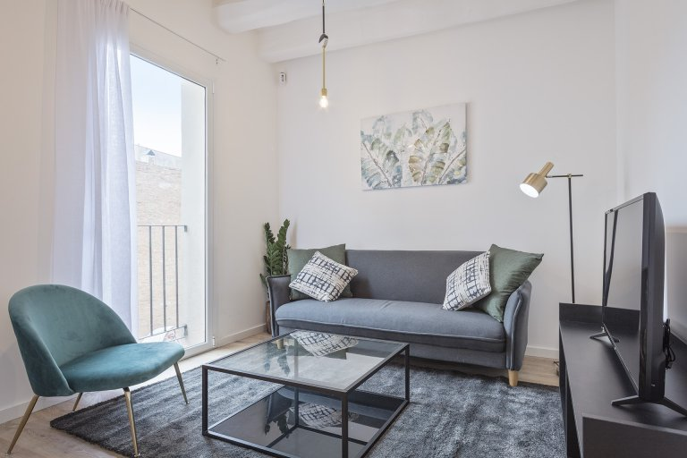 Whole 1 bedrooms apartment in Barcelona