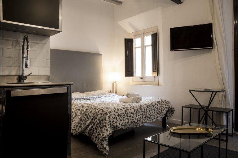 Hip studio mieszkanie do wynajęcia w Barri Gòtic, Barcelona