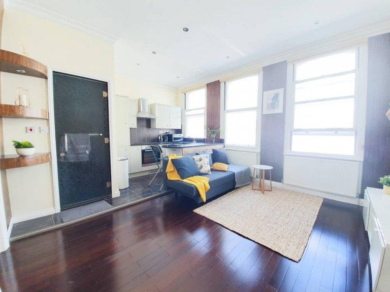 Wspaniałe mieszkanie z jedną sypialnią do wynajęcia w Camden w Londynie