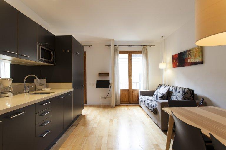 Lovely 1-bedroom apartment for rent in El Born, Barcelona