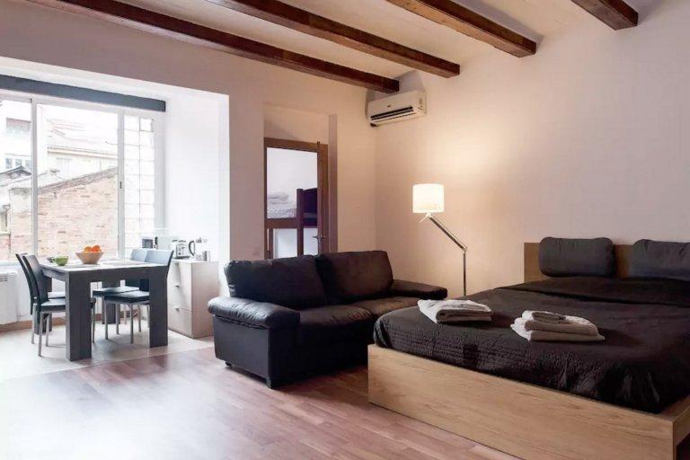 Family-friendly 1-bedroom apartment in Sants, Barcelona