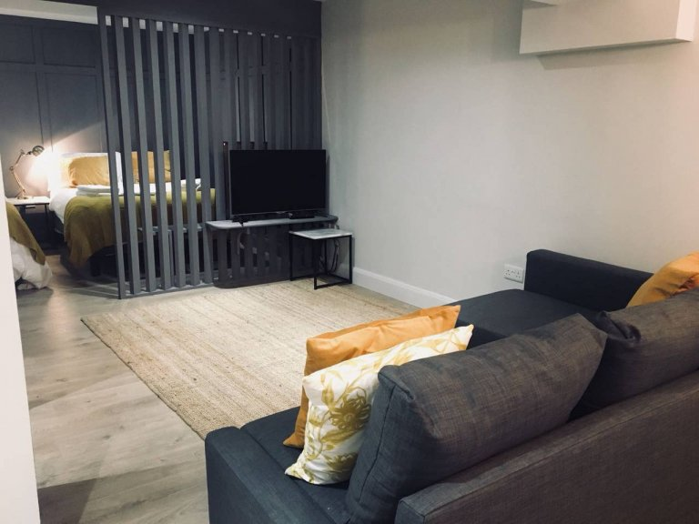 Gorgeous studio flat to rent in Temple Bar, Dublin