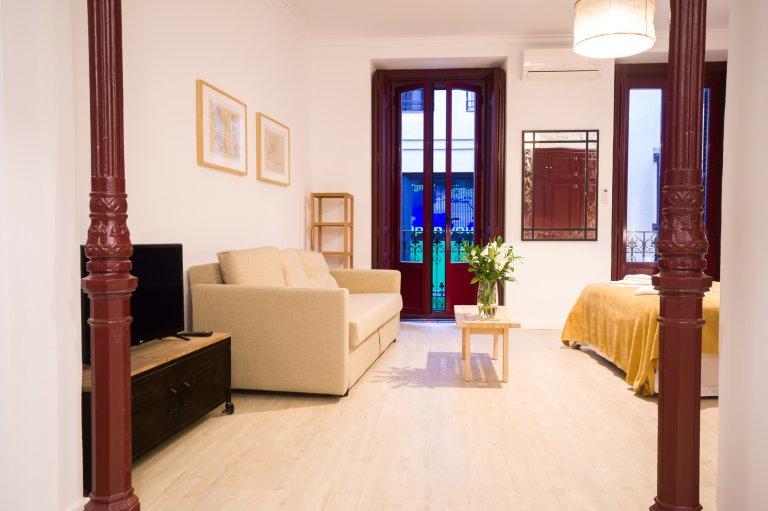 Studio-Wohnung zur Miete in Centro, Madrid