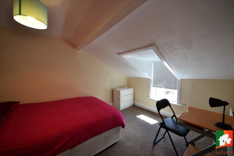 Cute room in Dolphins Barn, Dublin