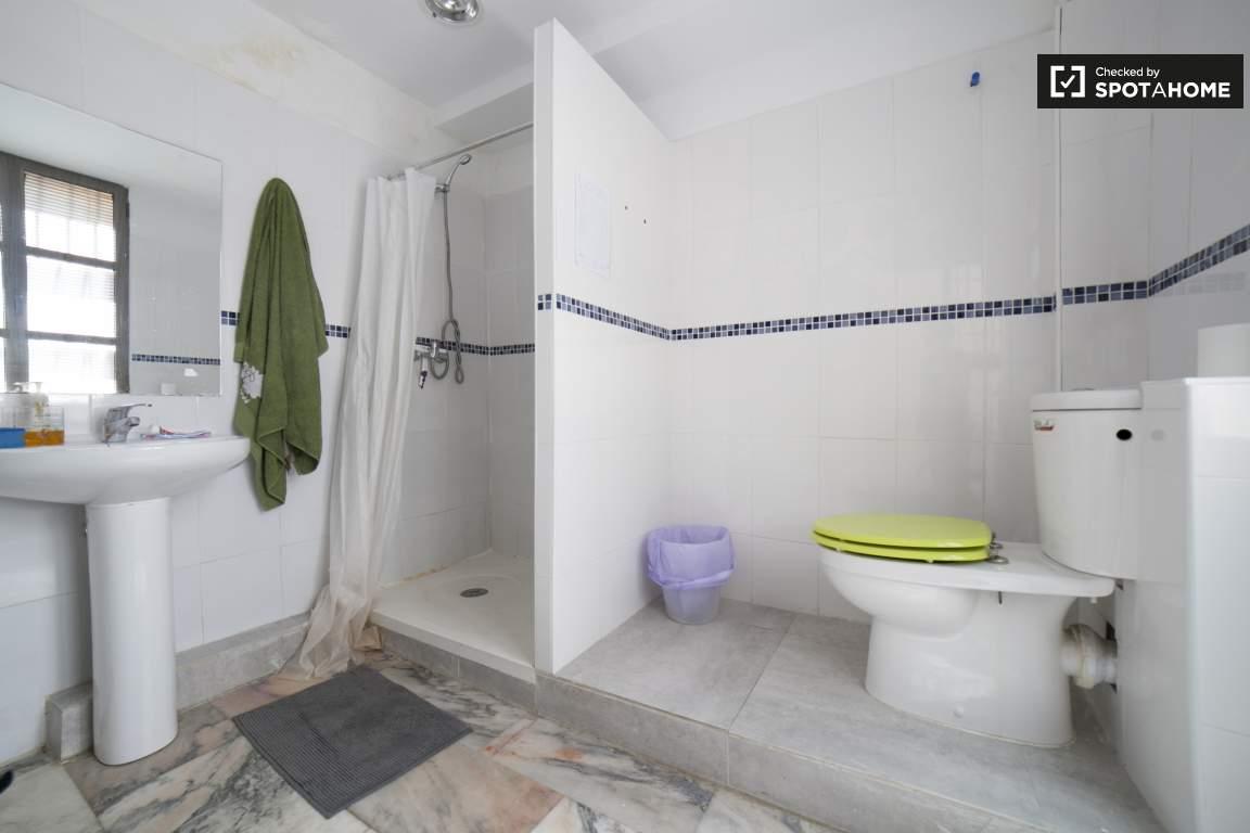 Bathroom 2 (basement)