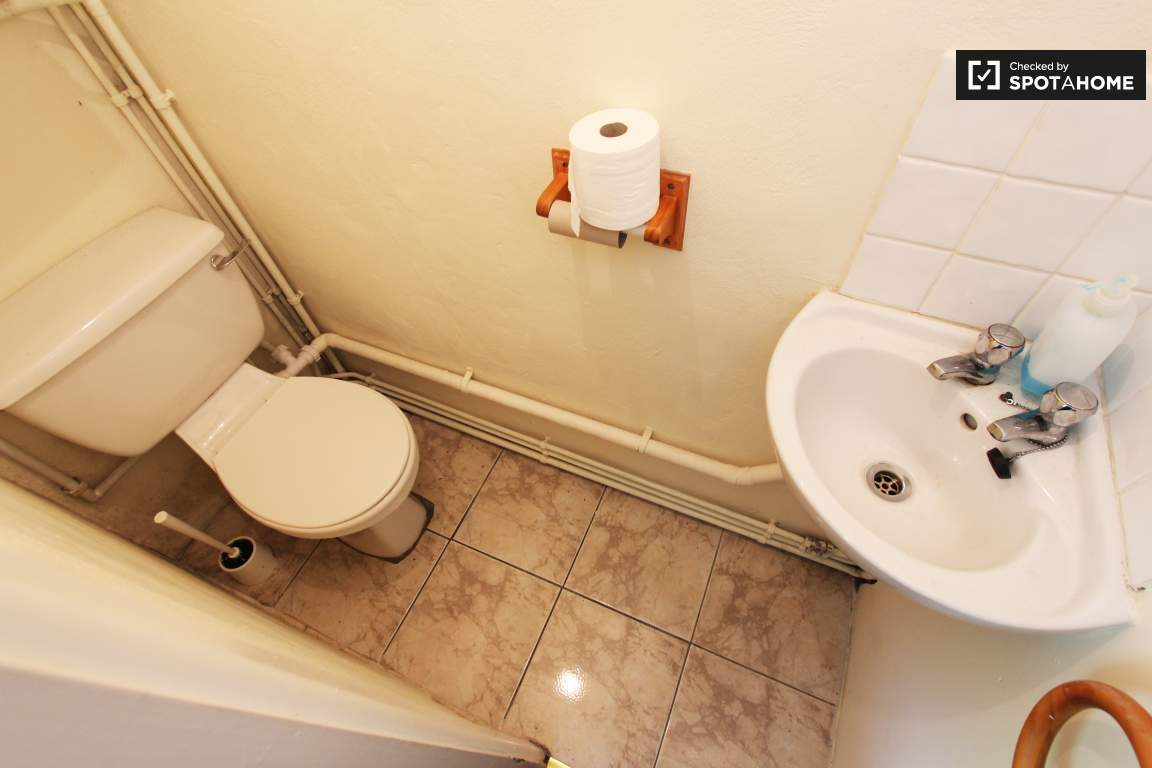 Toilet (downstairs)