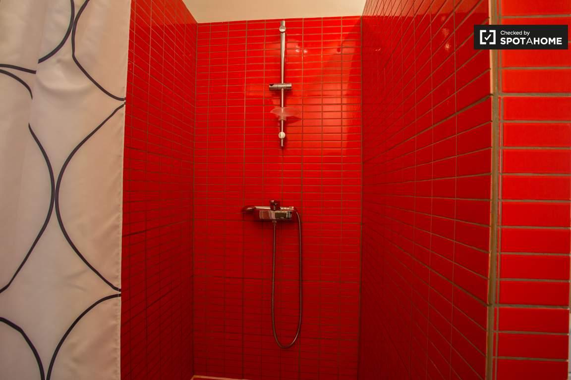 Shower (lower floor)
