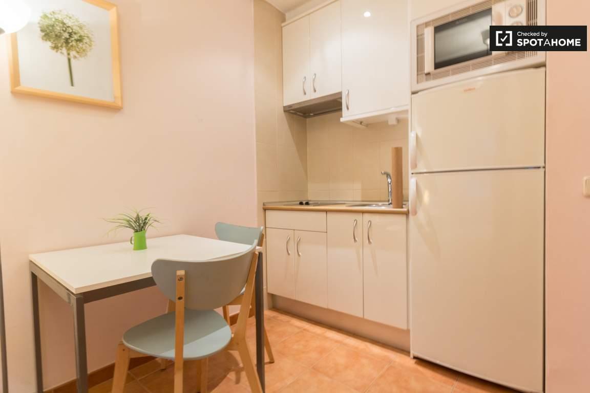 Main Room/Kitchen