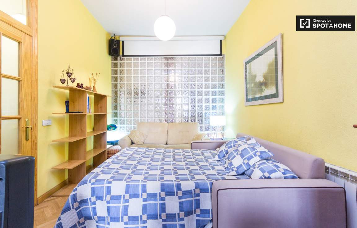 Living room / Bedroom 2
