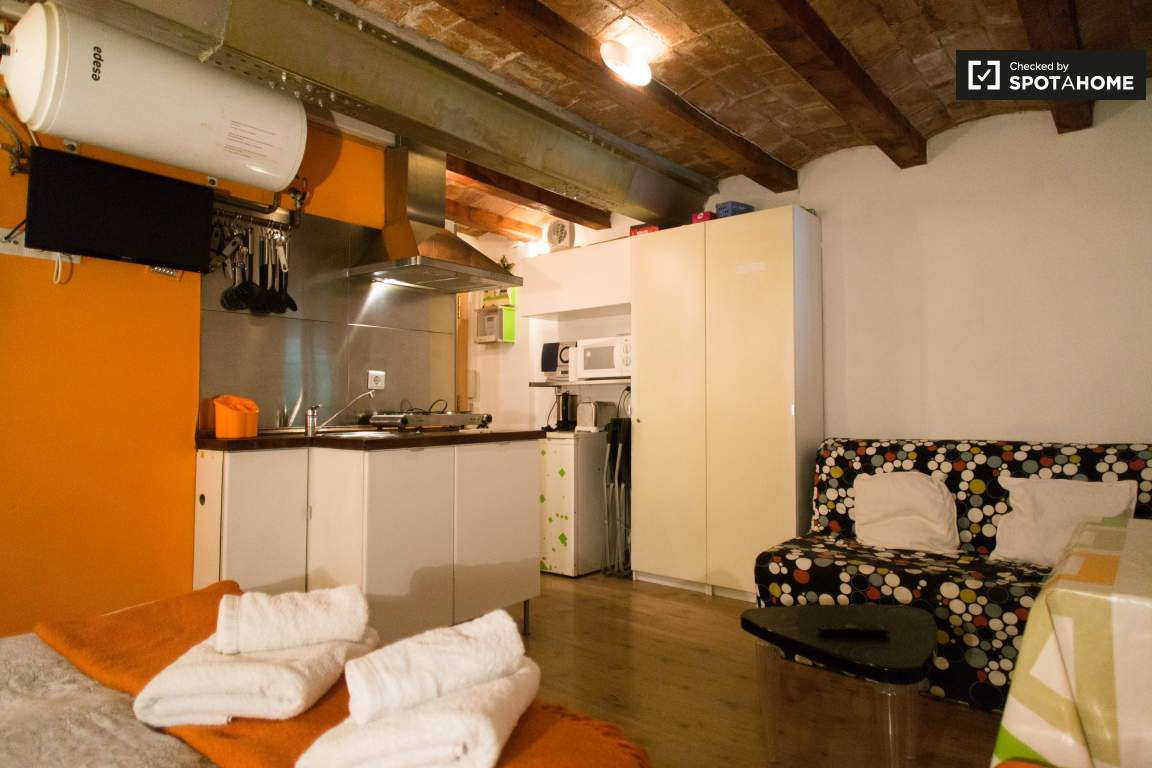 Studio Apartment With Ac For Rent In Poble Sec Barcelona Ref  # Muebles Poble Sec