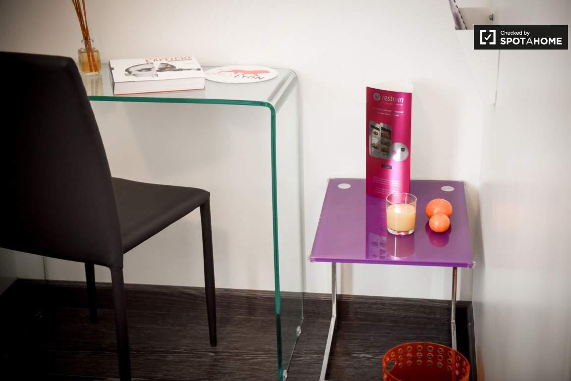 Study area (Croix Rousse)