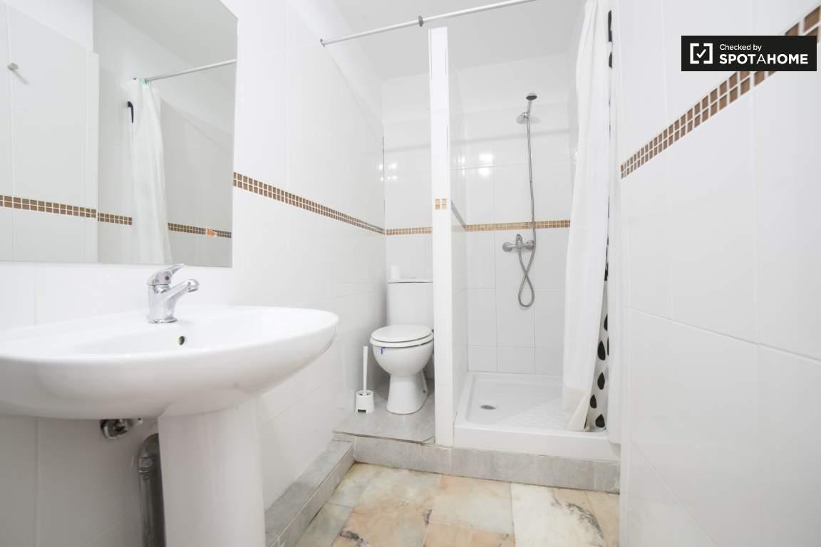 Bathroom (basement)