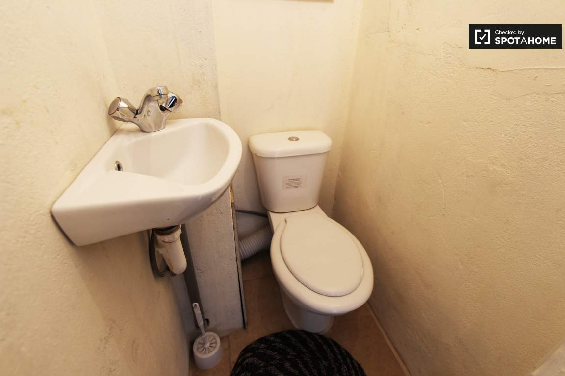 Toilet: lower floor