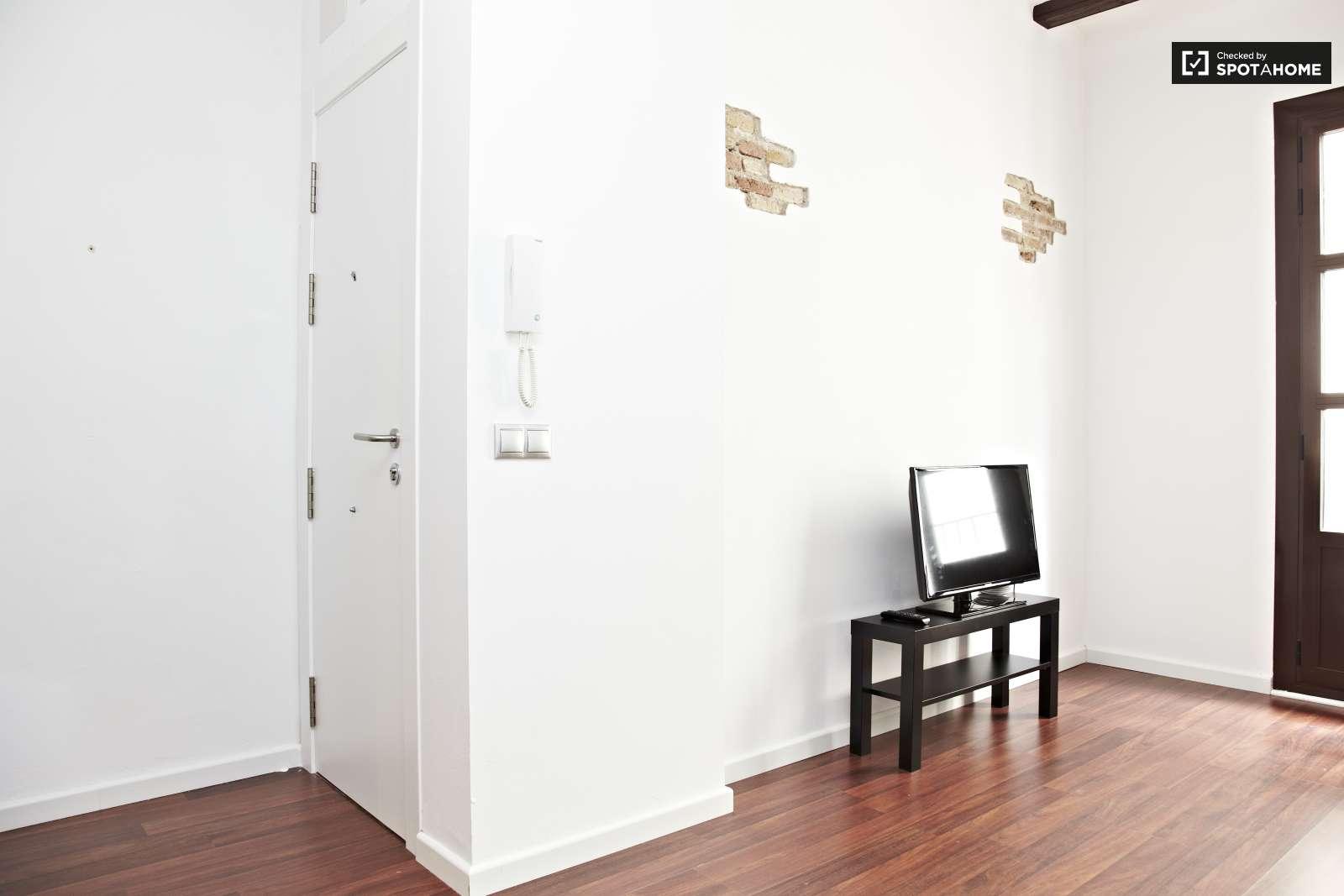 Impresionante piso de 1 habitaci n en el raval barcelona for Piso 1 habitacion barcelona