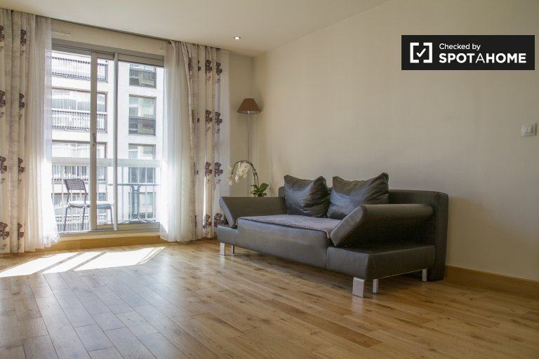 Stylish and bright 1-bedroom apartment for rent in the 15th arrondissement of Paris