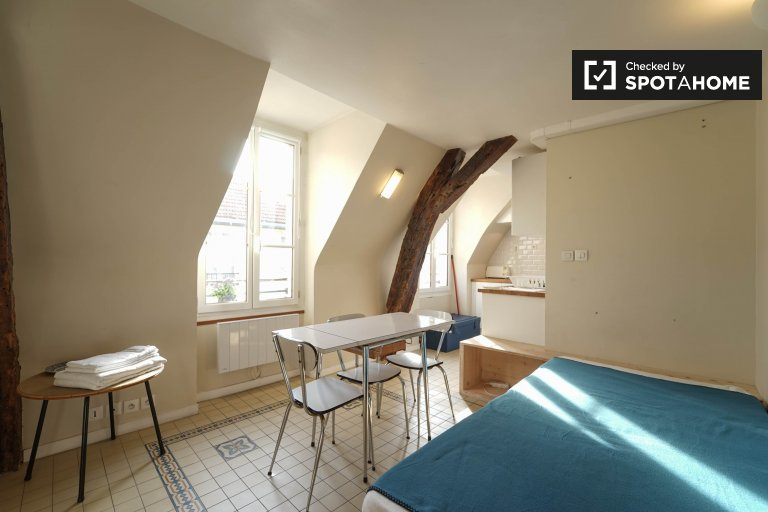 Bright 1-bedroom apartment for rent in 3rd arrondissement