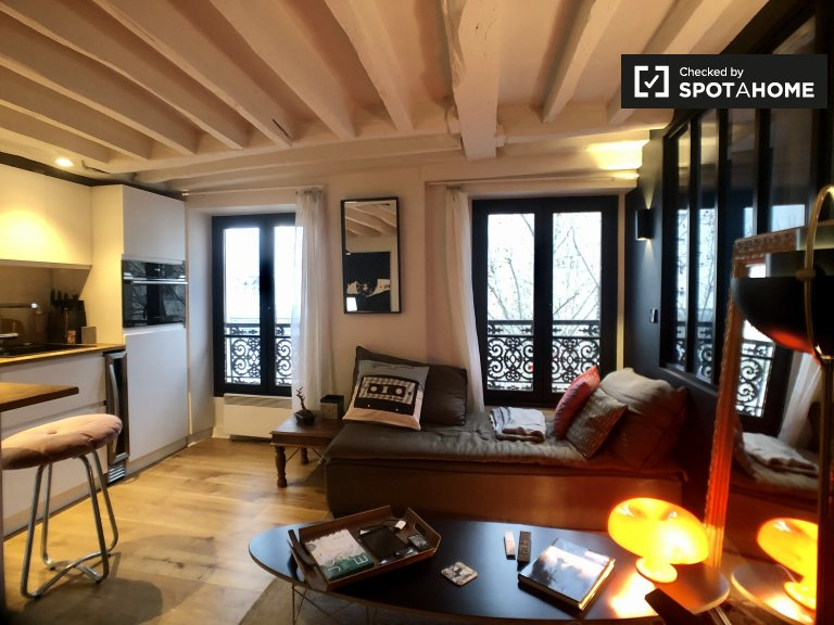 Stylish studio apartment for rent in the 3rd arrondissement