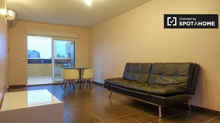 Pet-friendly 3-bedroom apartment for rent in Buttes-Chaumont, Paris 19