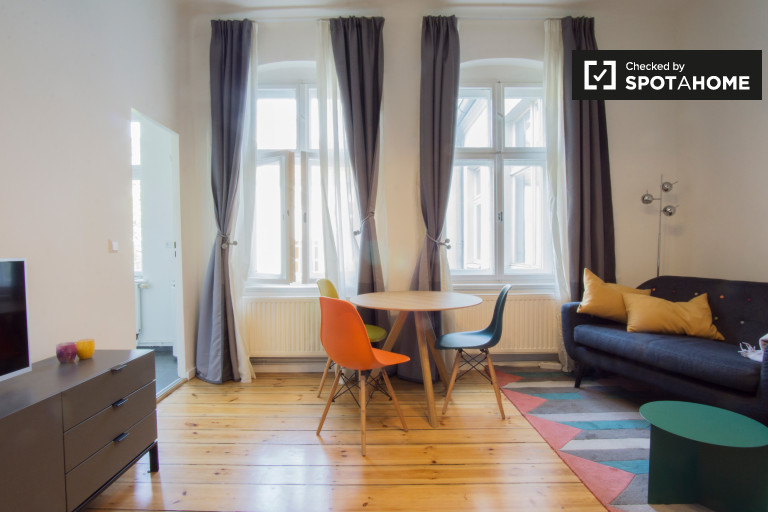 Bright studio apartment for rent in Prenzlauer Berg, Berlin