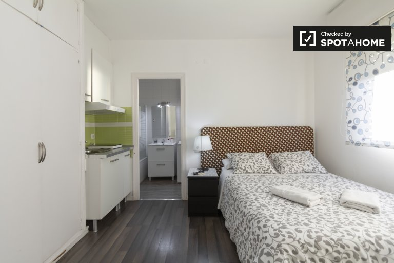 Sunny studio apartment for rent in Moncloa, Madrid