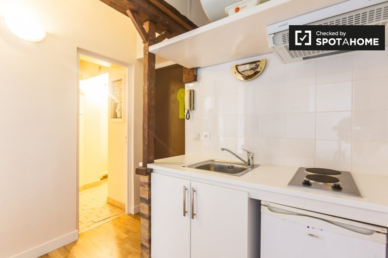 Quaint 3-bedroom apartment for rent in Saint Maur Créteil near Danube metro