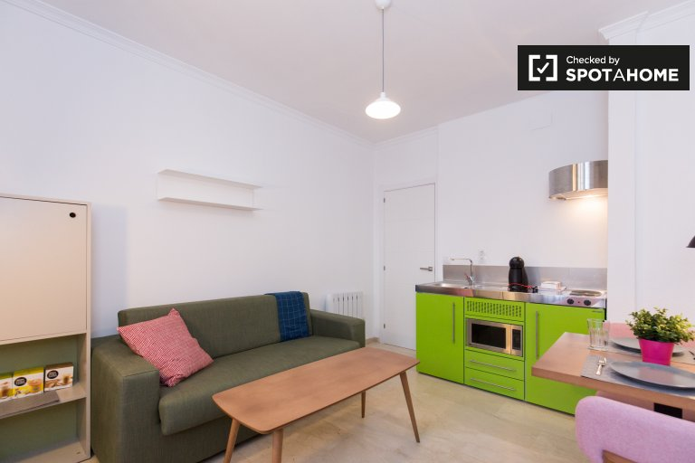 Beautifully renovated 1-bedroom apartment for rent in Realejo