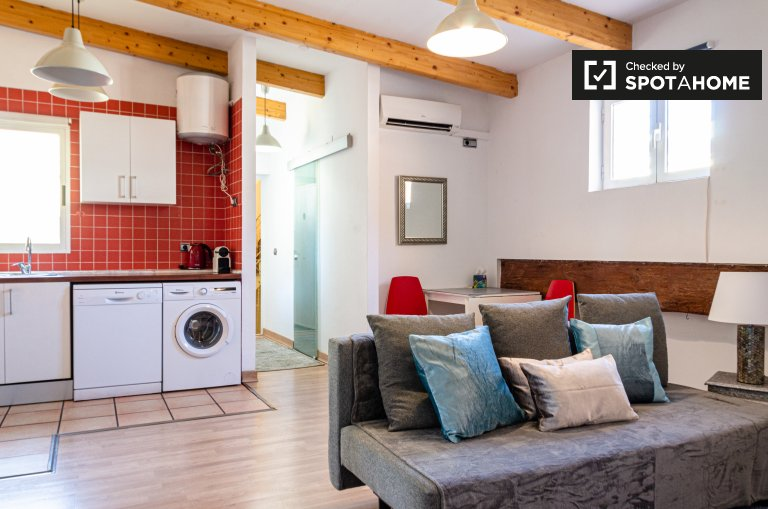 Studio apartment for rent in Central Valencia