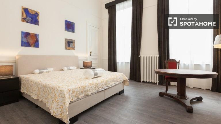 Lovely room in apartment in Ixelles, Brussels