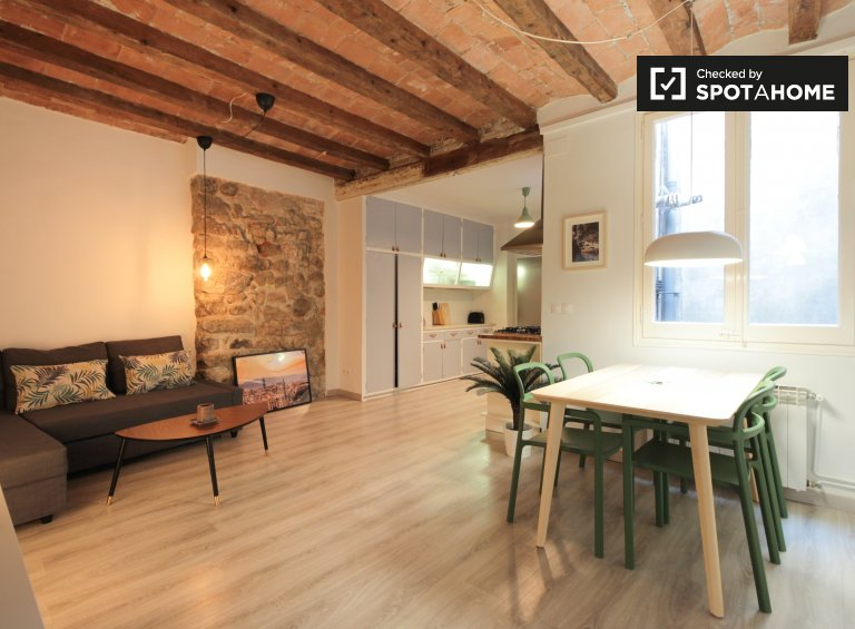 Stylowy 1-pokojowy apartament do wynajęcia w Barri Gòtic