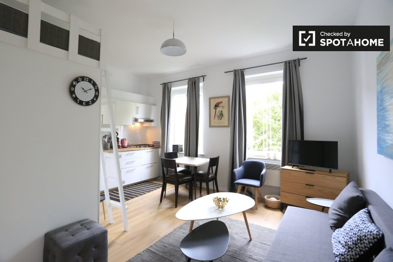 Stylish studio apartment for rent in Ixelles, Brussels