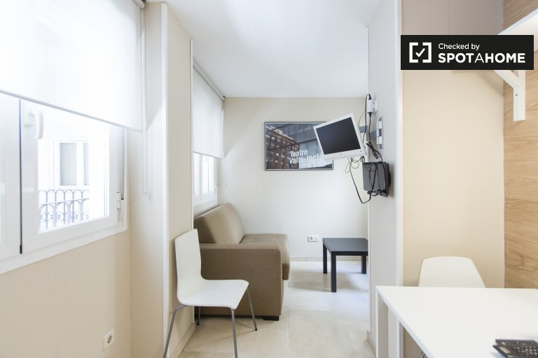 Charming studio apartment for rent in Centro, Madrid