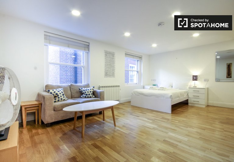 Stylish studio apartment to rent in the City of London