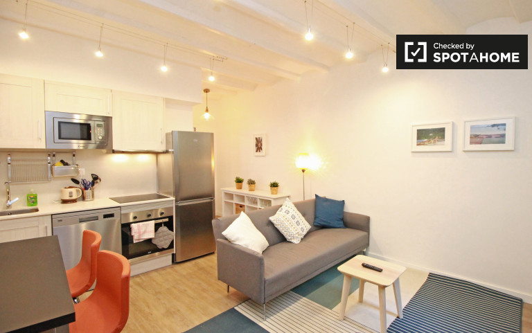 Modern 1-bedroom apartment with balcony for rent near university