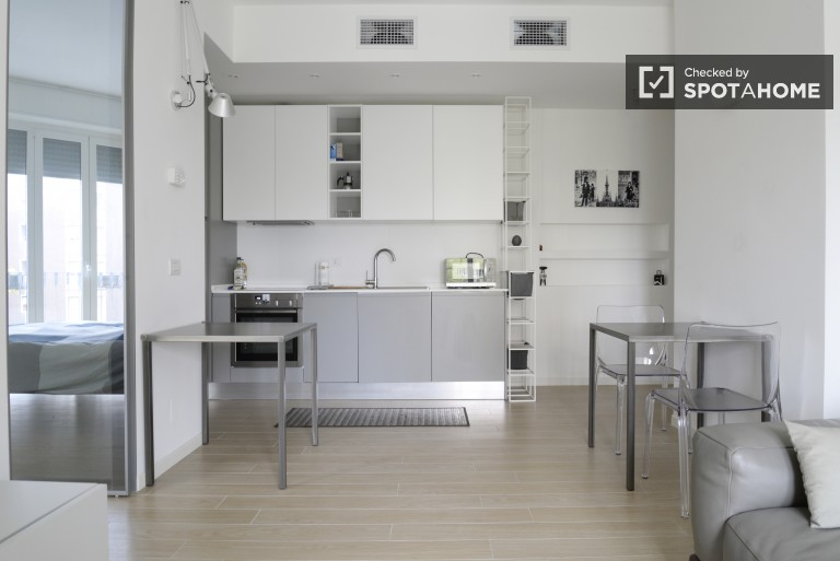 Stylish 1-bedroom apartment with AC for rent in Lorenteggio area