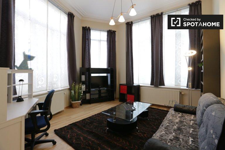 Spacieux appartement 1 chambre à louer, quartier européen