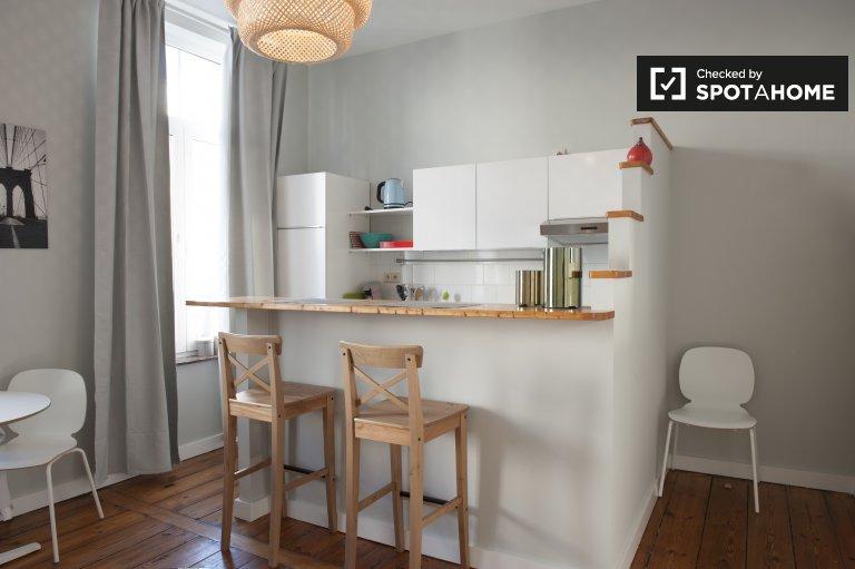 Bright 1-bedroom apartment for rent in the European Quarter