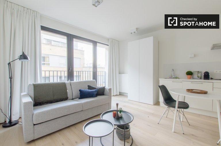 Piękny apartament typu studio do wynajęcia w centrum Brukseli