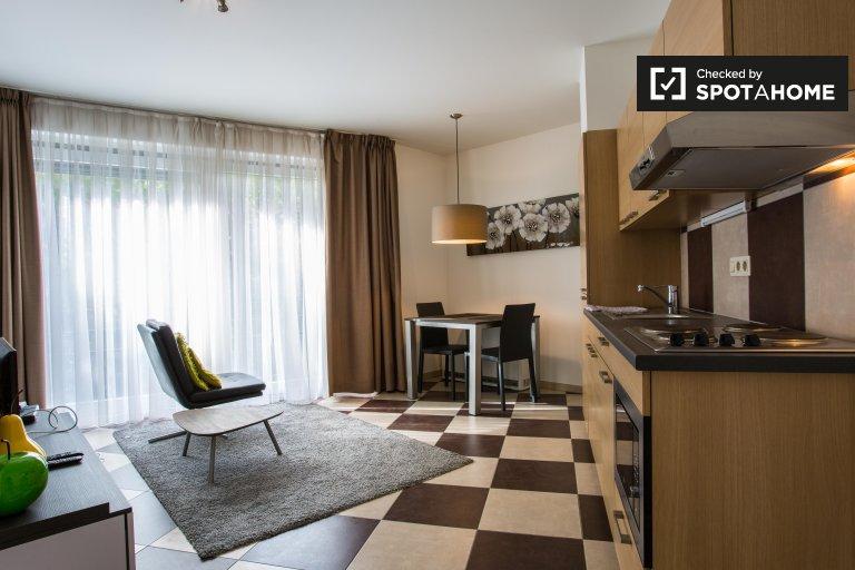Beautiful studio apartment for rent in Brussels