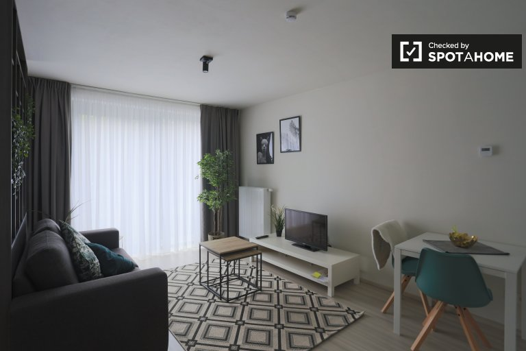 Studio apartment for rent in Northern Quarter, Brussels