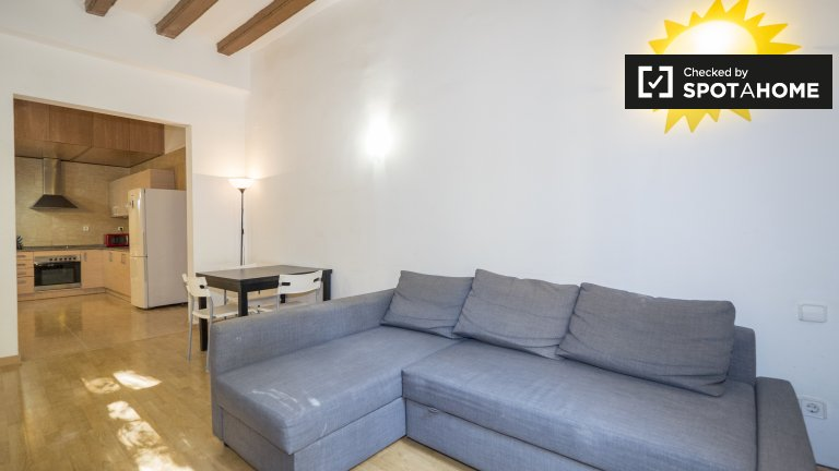 Chic 1-bedroom apartment for rent in Barri Gòtic, Barcelona