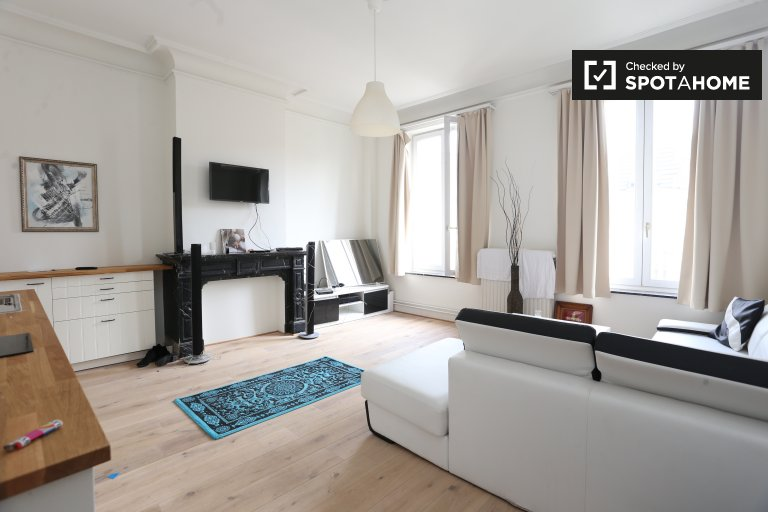 Bright and spacious 1-bedroom apartment for rent in Brussels