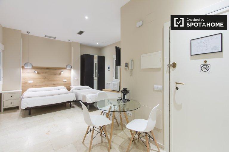 Pleasant studio apartment for rent in centre of Madrid