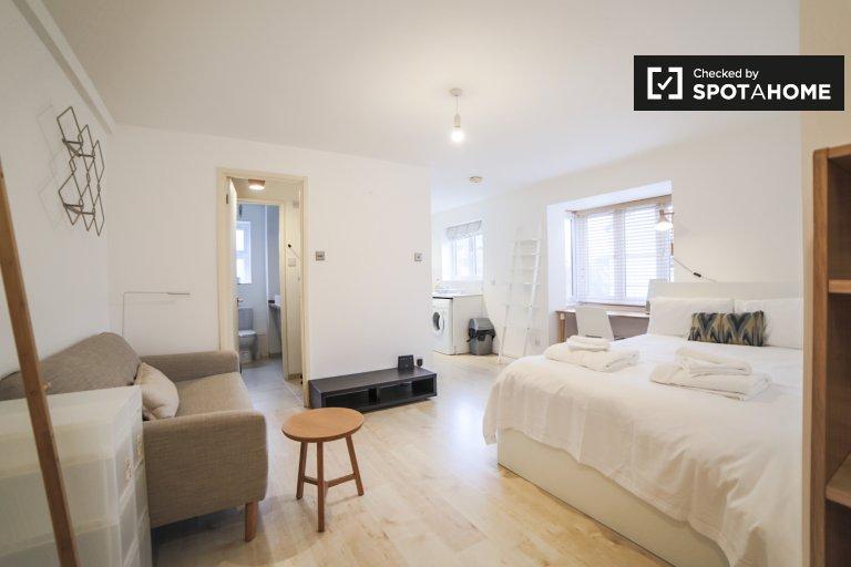 Simpatico monolocale in affitto a Bermondsey, Londra