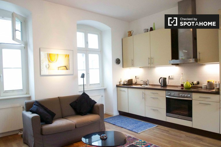 Cozy 1-bedroom apartment for rent in Mitte