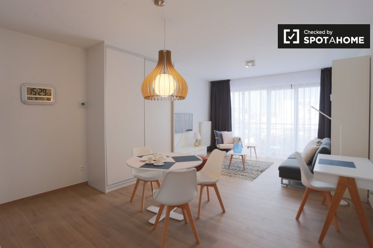 Studio apartment with terrace for rent in Auderghem