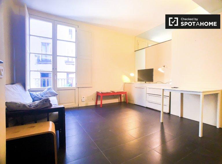 Superbe appartement 1 chambre à louer à El Born, Barcelone
