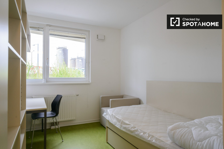 Cozy studio apartments for rent in residence hall in Donaustadt