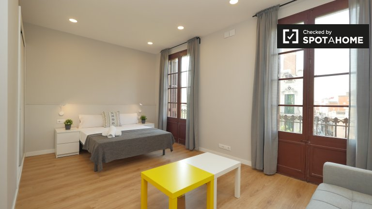 Stylish studio for rent in Sants, Barcelona