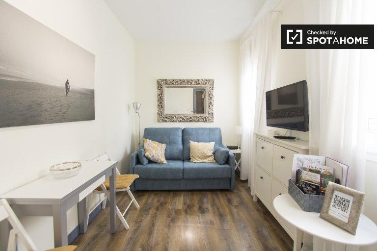 Stylowy 1-pokojowy apartament do wynajęcia w Lavapiés w Madrycie